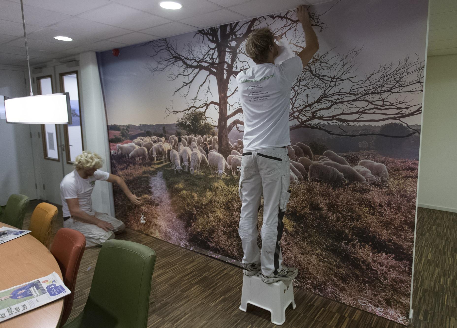 Natuur aan de muur - fotobehang op maat | 123Fotobehang