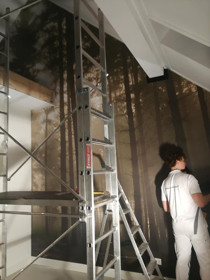 fotobehang bos 5 meter hoog