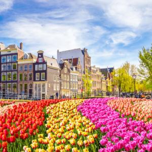 Foto 11 Amsterdam