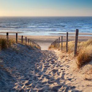 Foto 1 Strand Zee Duinen