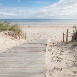 Foto 17 Strand Zee Duinen