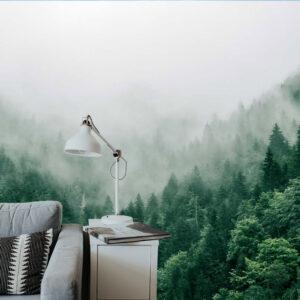 natuur interieur bos met mist