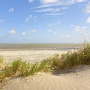 Foto 9 Strand Zee Duinen