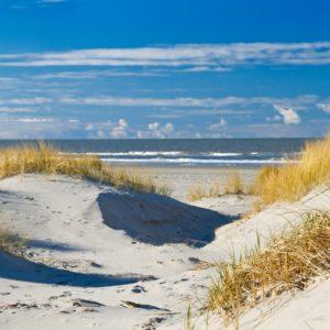 Foto 10 Strand Zee Duinen