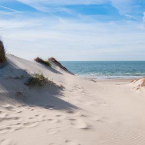 Foto 4 Strand Zee Duinen