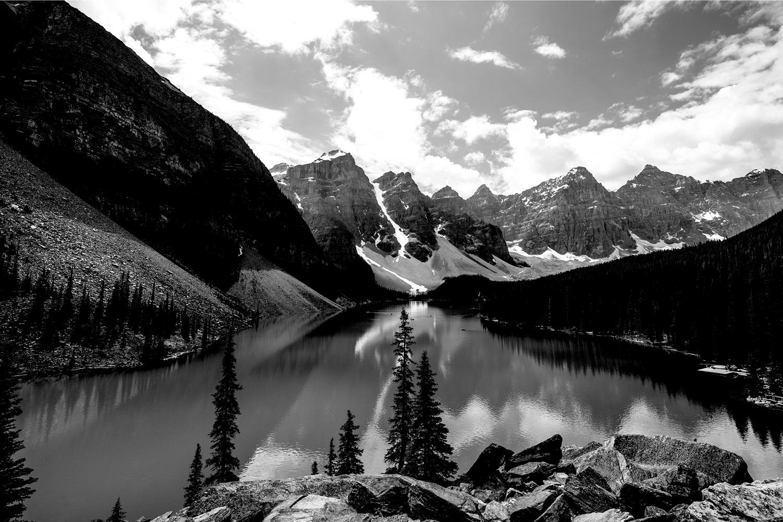 fotobehang zwart wit natuur