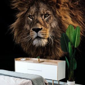 slaapkamer leeuw kop manen zwart