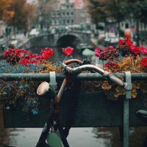 Foto 21 Amsterdam