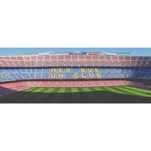 Foto 8 FC Barcelona