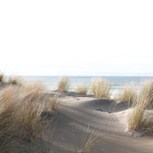 Foto 25 Strand Zee Duinen