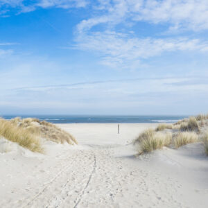 Foto 31 Strand Zee Duinen