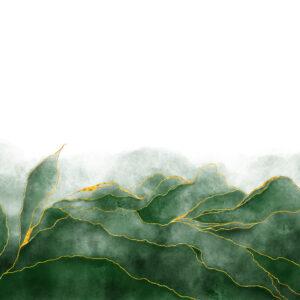 Foto 10 Planten - Bladeren