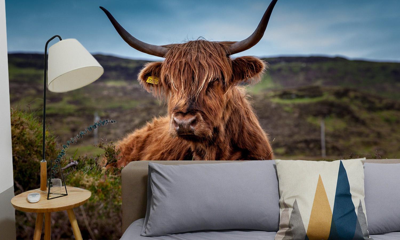 inspiratie slaapkamer koeien hooglander