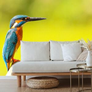 thema inspiratie dieren vogels bank
