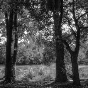 Foto 27 Zwart Wit