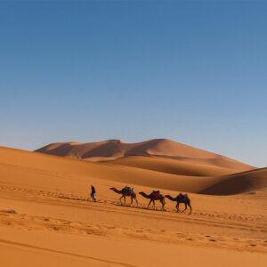 Foto 5 Afrika