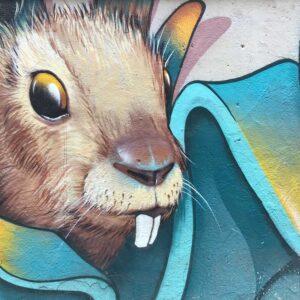 Foto 8 Graffiti