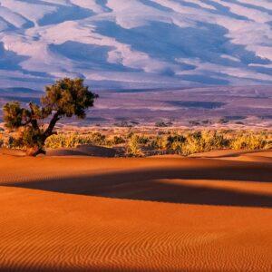 Foto 9 Afrika