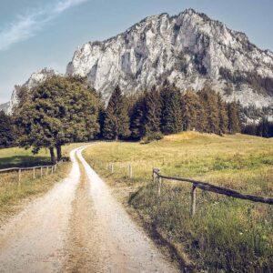 Foto 17 Oostenrijk