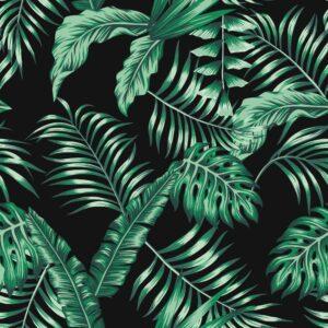 Foto 23 Palmbomen