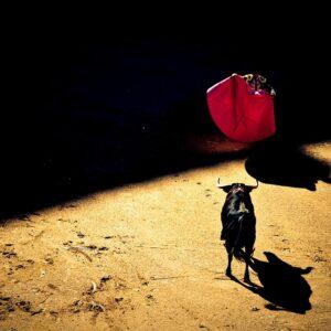Foto 4 Spanje