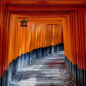 Foto 19 Japan