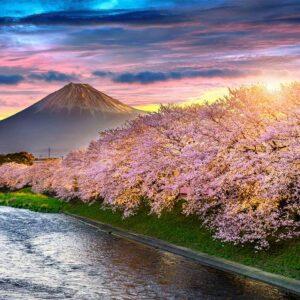 Foto 10 Japan