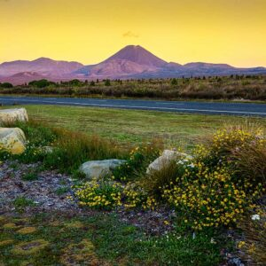 Foto 5 Nieuw-Zeeland