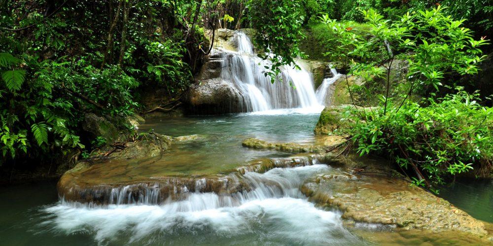 fotobehang bos waterval met zonlicht